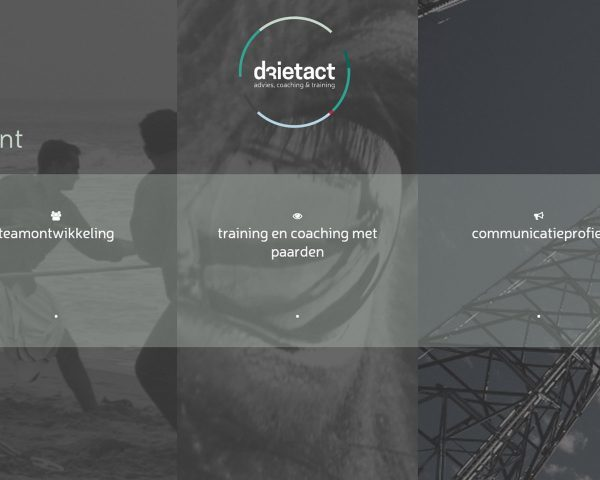 Drietact Executive Coaching Website by Michiel Tramper